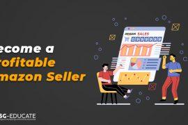 profitable amazon seller